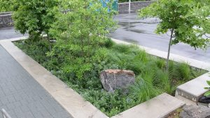 Green infrastructure planter _ PO