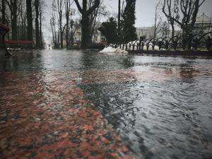 Rain street igor-tudoran-unsplash _ FSP